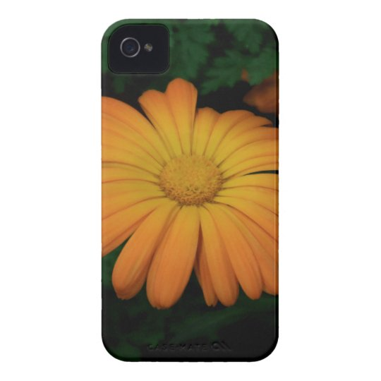 Yellow orange daisy flower iPhone 4 case