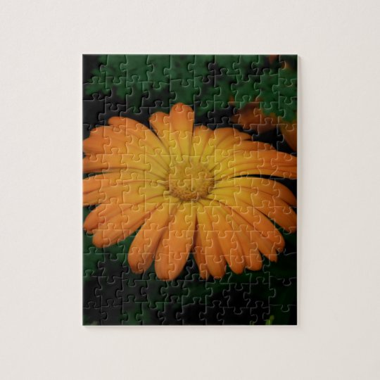 Yellow orange daisy flower jigsaw puzzle