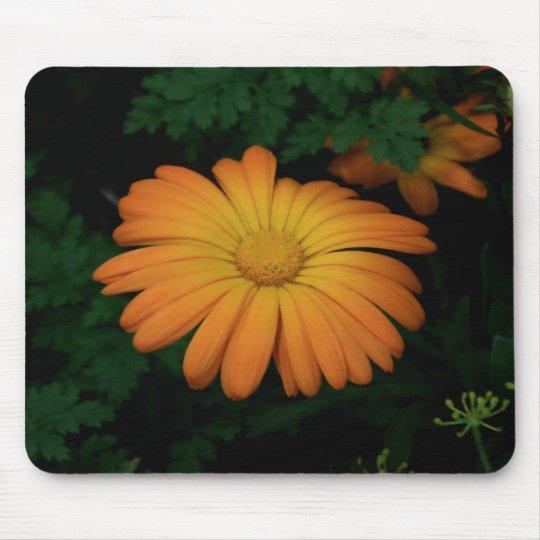 Yellow orange daisy flower mouse pad
