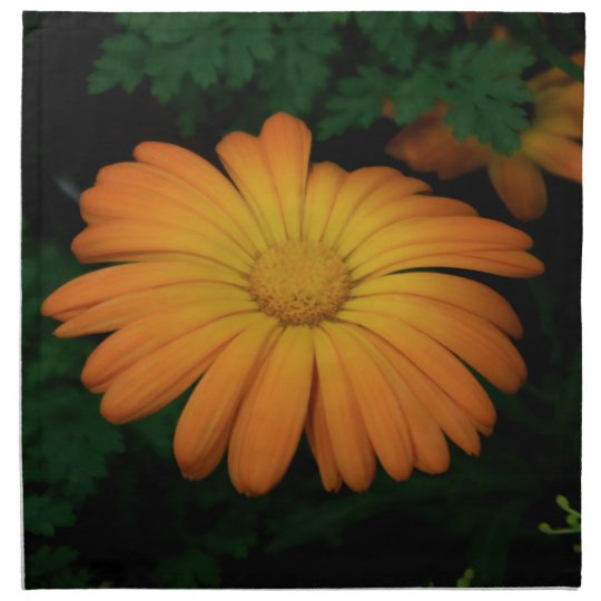 Yellow orange daisy flower napkin