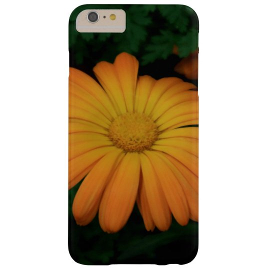 Yellow orange daisy flower samsung galaxy nexus cover