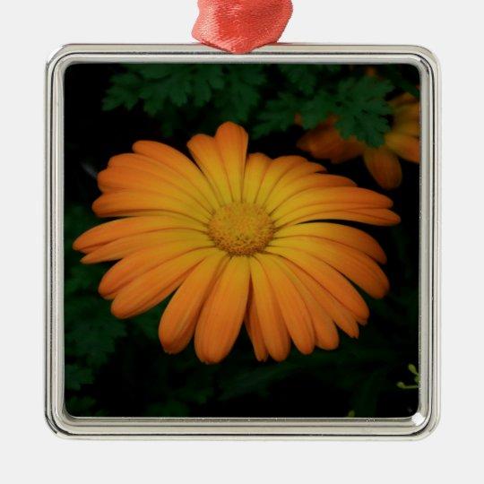Yellow orange daisy flower Silver-Colored square ornament