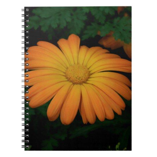 Yellow orange daisy flower spiral notebooks