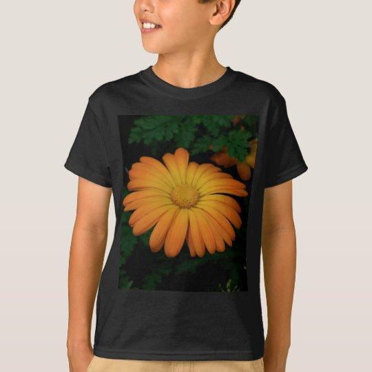 Yellow orange daisy flower T-Shirt