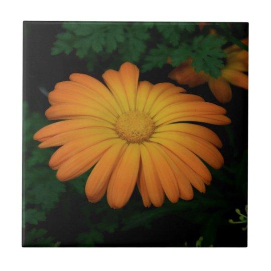Yellow orange daisy flower tile