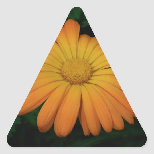 Yellow orange daisy flower triangle sticker