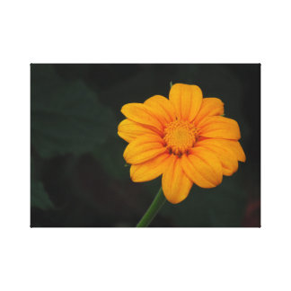 Yellow/Orange Flower Canvas Print