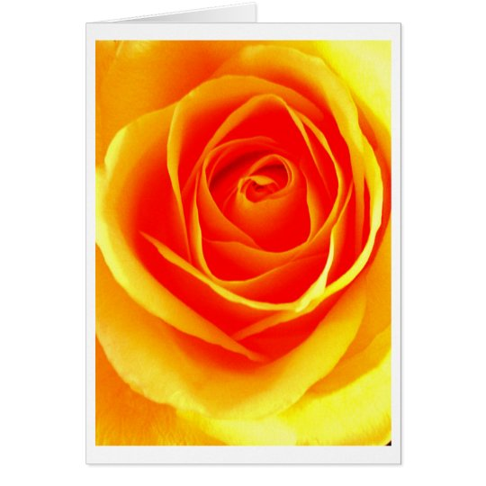 Yellow Orange Rose Card