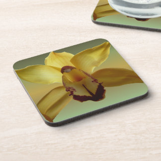 Yellow Orchid coasters