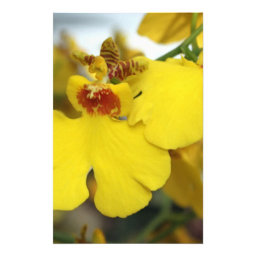 Yellow orchid flower personalized stationery