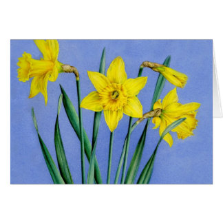 Yellow painted watercolor Daffodils art card