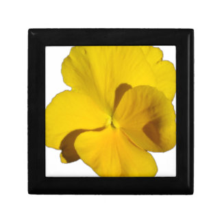 Yellow Pansy 201711f Gift Box