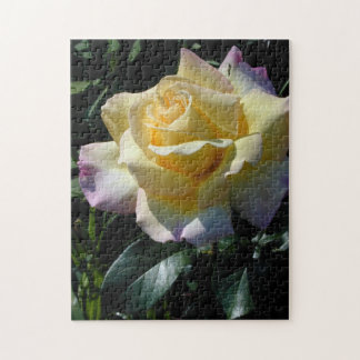 Yellow Peace Rose Garden Puzzle
