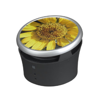 Yellow petals of a large sunflower speaker