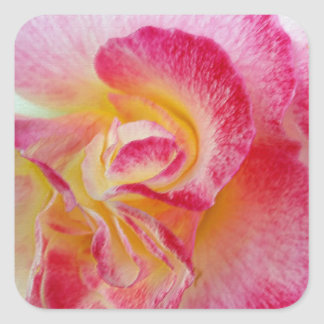 yellow pink petals square sticker