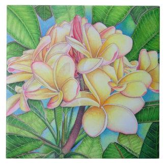 Yellow Pink Plumeria Ceramic Tile