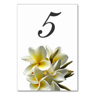 Yellow Plumeria Wedding Table Number Cards