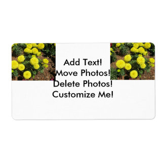 Yellow Pompom Marigolds Garden Plants Shipping Label