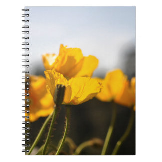 Yellow Poppies Spiral Notebook