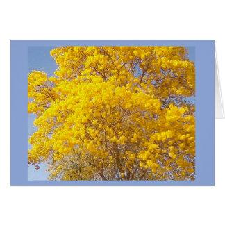 Yellow Poui, TT (2) Card