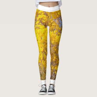 Yellow Poui, TT Leggings