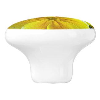 Yellow Primroses Ceramic Knob
