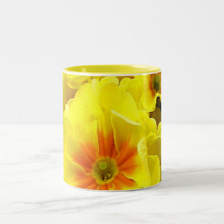 Yellow Primula in springtime Two-Tone Coffee Mug