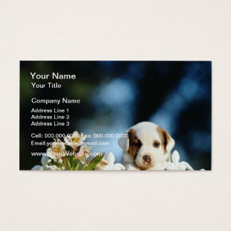 Yellow Puppy with brown ears looking over iron fen Business Card
