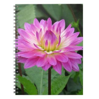 Yellow Purple Dahlia Notebooks