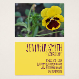 Yellow Purple Pansy Flower Floral Garden Photo Business Card