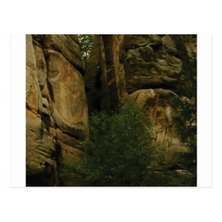 yellow rock face with trees postcard