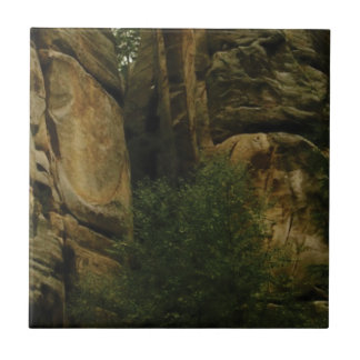 yellow rock face with trees tile