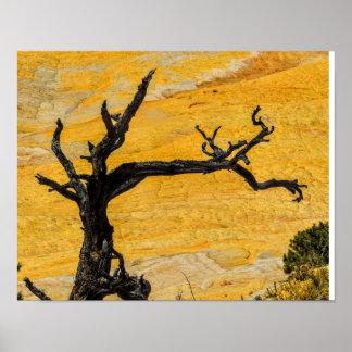 Yellow Rock Poster