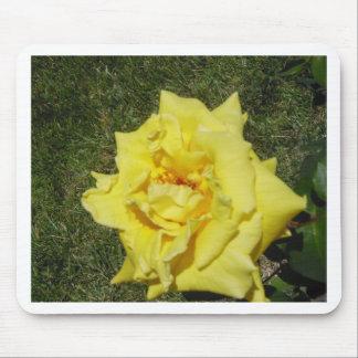 Yellow Rose-1 Mousepad