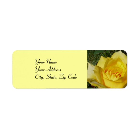 Yellow Rose address lables