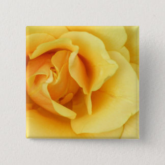 Yellow Rose Blossom Square Button