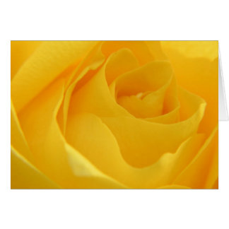 Yellow Rose Card