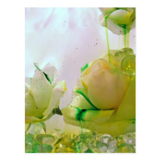 Yellow Rose collection Postcard
