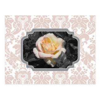 Yellow Rose Damask Notecard Postcard