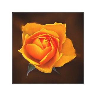 Yellow rose flower canvas print