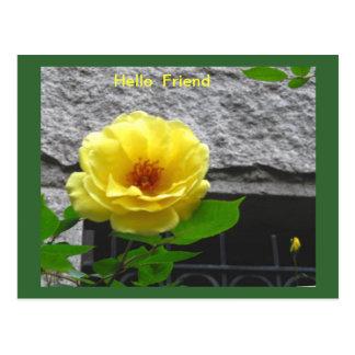 YELLOW ROSE FRIENDSHIP POSTCARD
