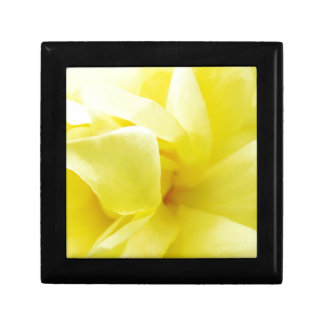 Yellow Rose Gift Box
