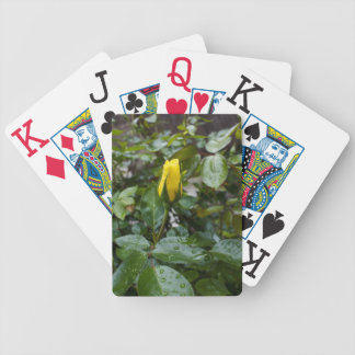 Yellow Rose in the Rain Poker Deck