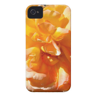 Yellow Rose iPhone 4 Case
