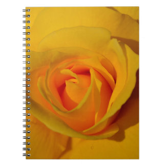 Yellow Rose Note Book