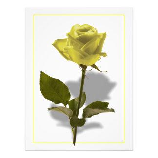 Yellow Rose of Friendship Photo
