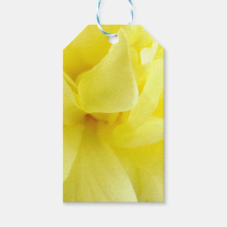 Yellow Rose Pack Of Gift Tags