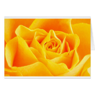 Yellow rose painted card