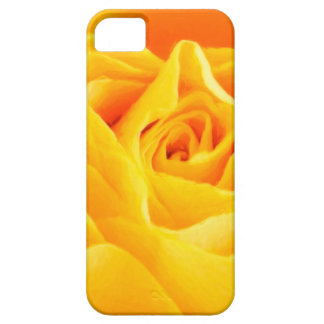 Yellow rose painted iPhone 5 cover