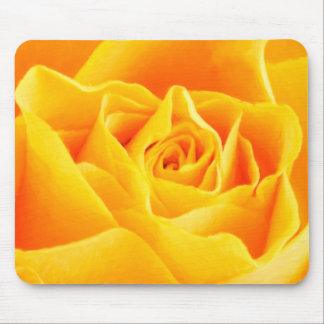 Yellow rose painted mouse pad